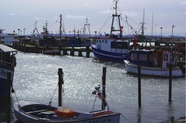 Bild 28 Sassnitz - Fischereihafen