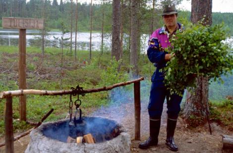 Finnland Birkenreisig-470