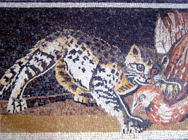 Friaul Mosaikschule Katze
