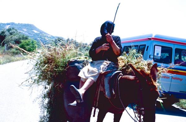 Kreta Alte auf Esel-600