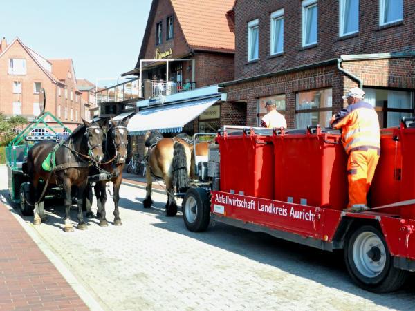 Pferdefuhrwerke_Juist_2014_09_18_Foto_Backert