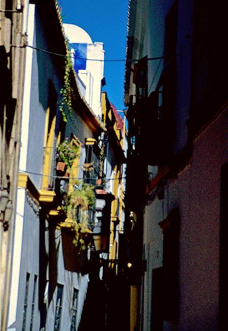 Sevilla Judenviertel Santa Cruz 2016-07-05 Foto Elke Backert-450
