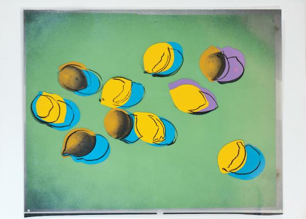 Warhol_SpaceFruit_V2_Presse-B- 600