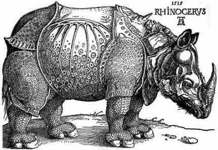 durer-rhinoceros.jpg