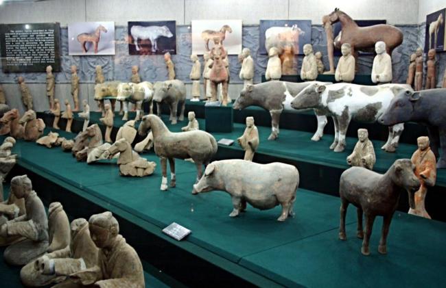 museum-7-650