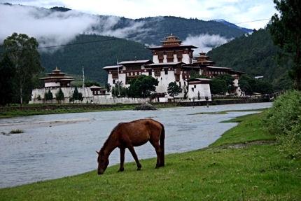 punakha-dzong.JPG